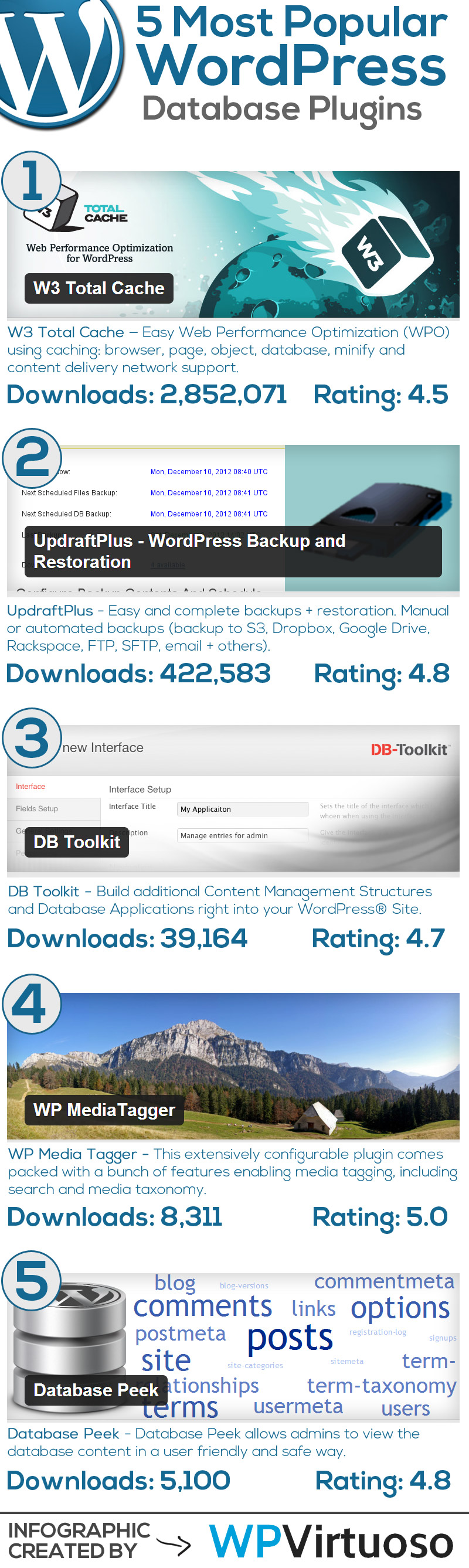 Best-Wordpress-Database-Plugins-Infographic