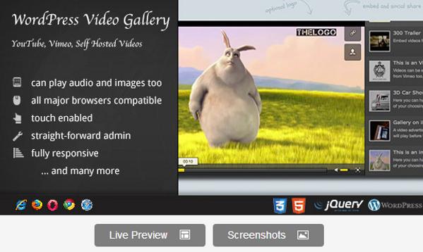 Premium Video Gallery WordPress Plugin