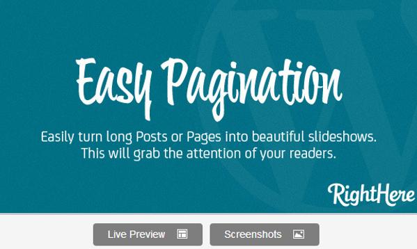 Easy Pagination for WordPress Premium Plugin