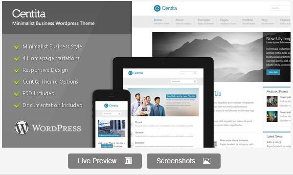 Centita - Minimalist Business WordPress Theme