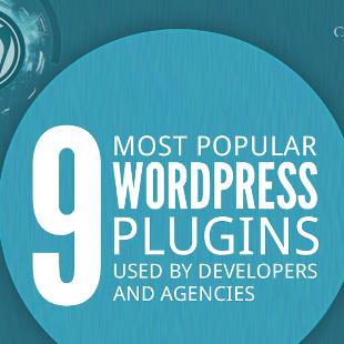 9 Most Popular WordPress Plugins for Developers