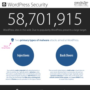 How to Prevent WordPress Security Hacks