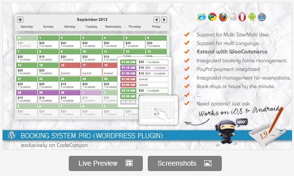 Calendar Booking Plugin Wordpress : Best wordpress calendar plugins wpvirtuoso
