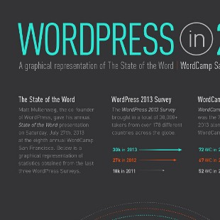 WordPress CMS Platform and Download Statistics