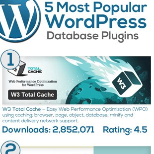 5 Best WordPress Database Plugins
