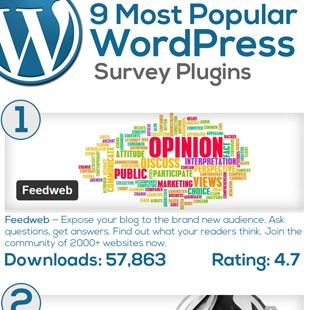 9 Best WordPress Survey Plugins