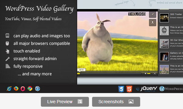 Premium Video Gallery WordPress Plugin