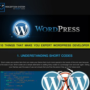 How to Develop a Website Using WordPress