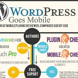 Two Best Mobile Plugins for WordPress