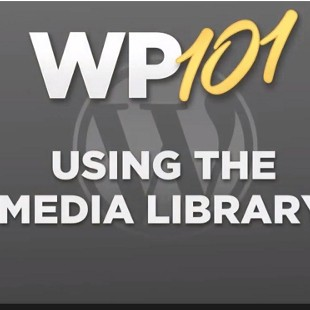 4 Best Free WordPress Media Library Plugins