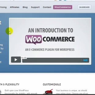4 Best Free WordPress E-Commerce Plugins
