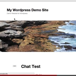 The 8 Best Free WordPress Chat Plugins