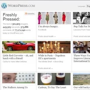 The Best Free WordPress Stats Plugins