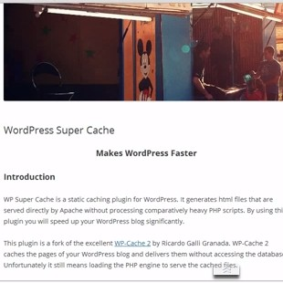 The 6 Best Free WordPress Cache Plugins