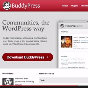 The 8 Best Free WordPress Buddypress Plugins