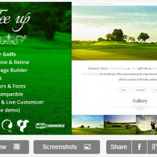 The 3 Best Golf WordPress Themes
