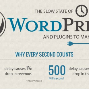 Why Are WordPress Sites Slow