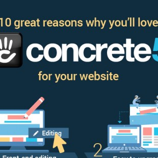 WordPress Concrete5 Comparison