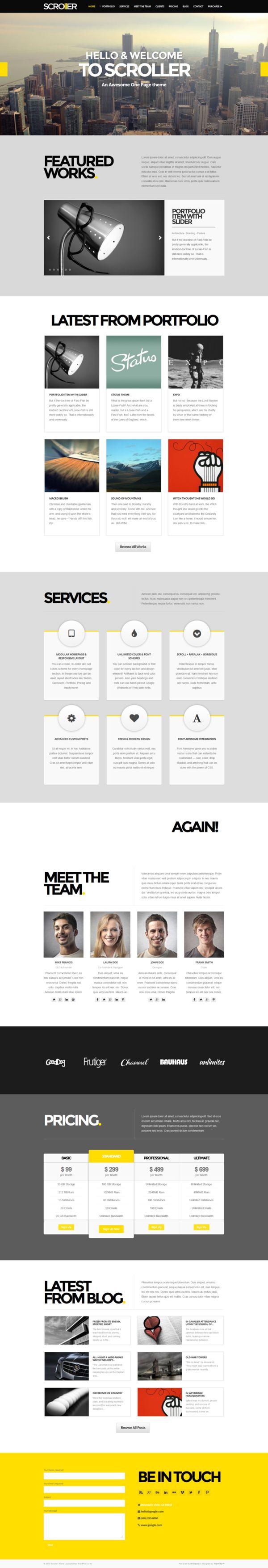 Wordpress Theme  Infographic